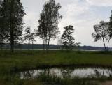 Daugavkrasti vasara 2017 I